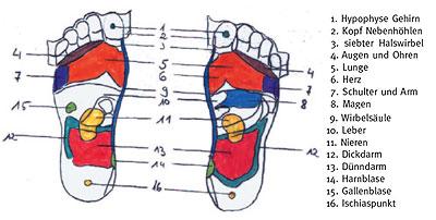 Alles zum Thema Wellness: Die Fußreflexzonenmassage